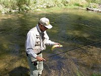 Catch And Release Fishing For New Anglers