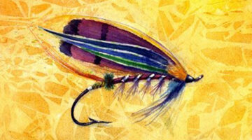 Drawing Flies 365 – Fly Fishing Art