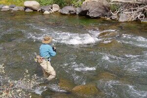 How To Present A Dry Fly On Running Water