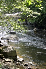 fly-fishing-gatlinburg-tn-by-lynnette.JPG
