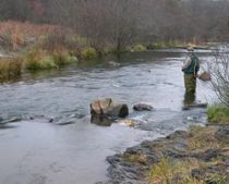 Wet Fly Fishing Upstream – Some Helpful Tips