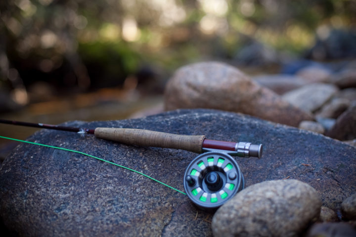 Fly Fishing Line 101: Types Of Fly Line Explained