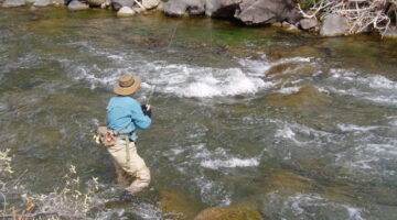The Best Trout Fishing Hotspots For Fly Fishermen