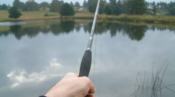 A Fly Fishing Guide Offers Tips For Choosing A Fly Rod