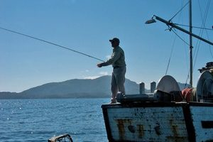 Tips techniques archives the fly fishing guide for Best time to go saltwater fishing