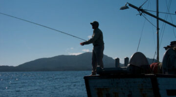 The ultimate fly fishing guide avid fly fishermen share for Best time to go saltwater fishing