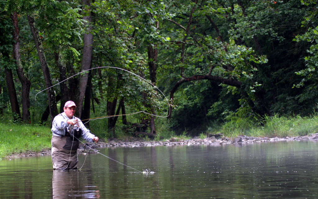 Fly rod casting techniques forward cast back cast for What is fly fishing