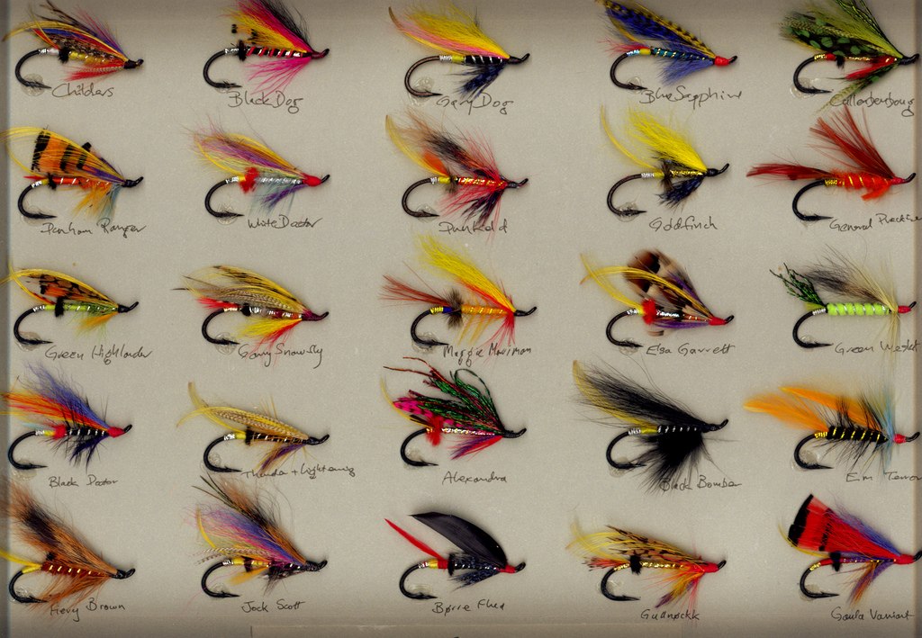 salmon fly fishing tips | the fly fishing guide, Fly Fishing Bait